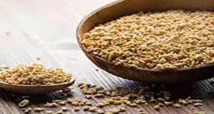 محصولات پروتئین سویا خوراکی